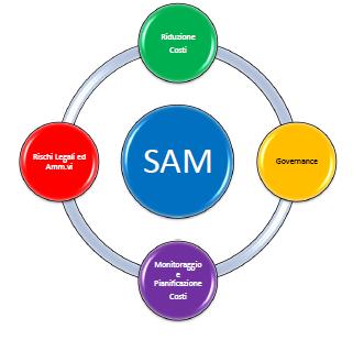 BSA - Software Asset Management - SAM