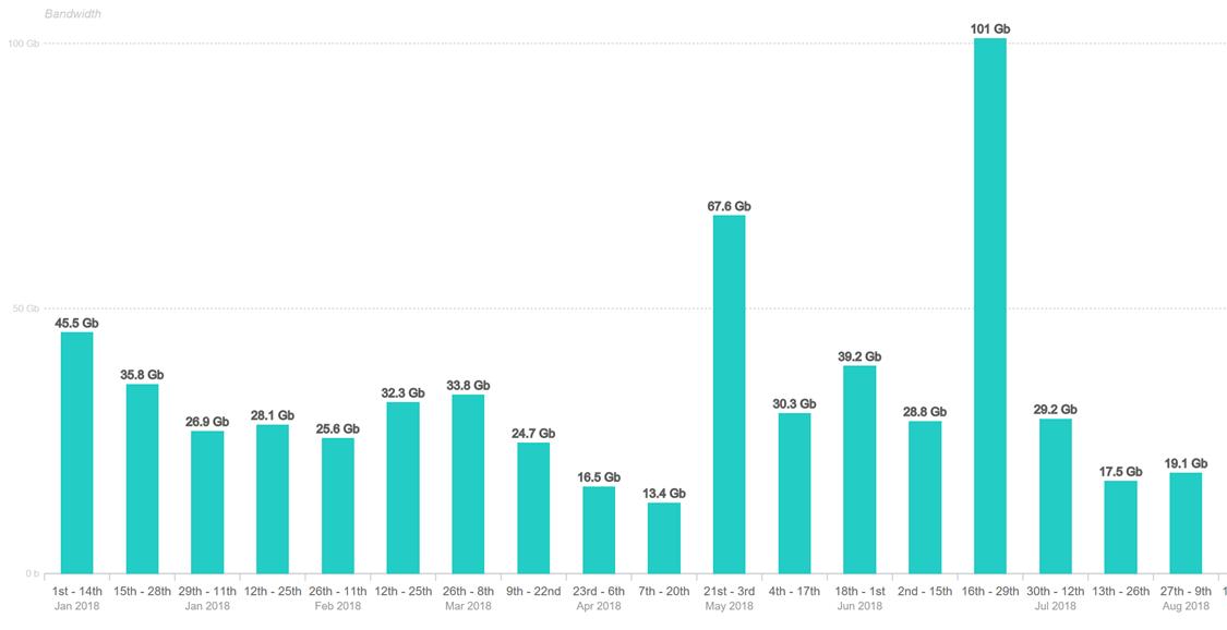 Gli attacchi DDoS in Italia nel primo semestre 2018. In evidenza l'attacco di luglio da 100 Gbps