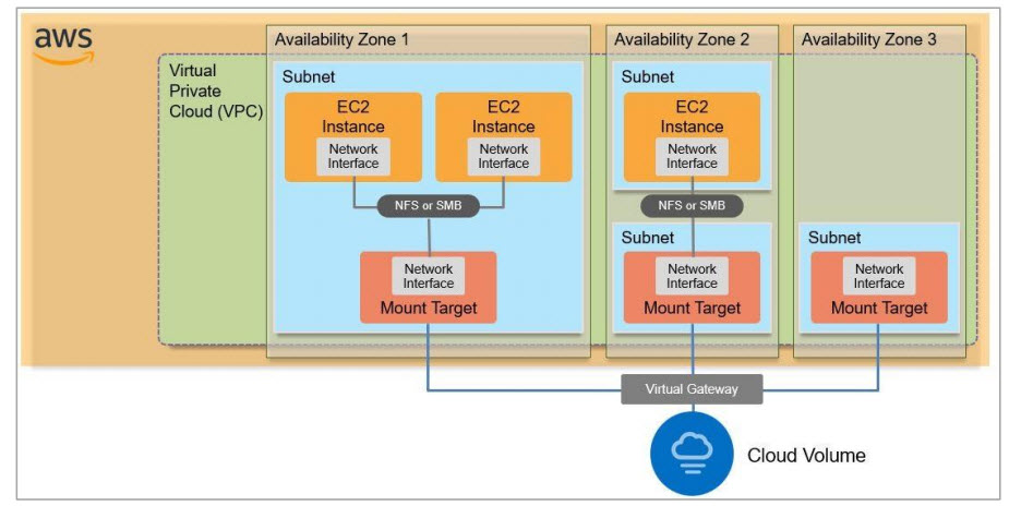 NetApp Cloud Volumes Services Architecture on Aws
