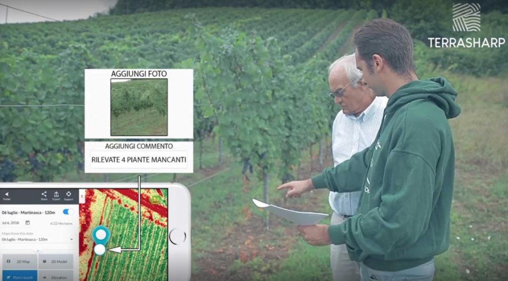 Terrasharp - Una fase di studio sulla viticoltura