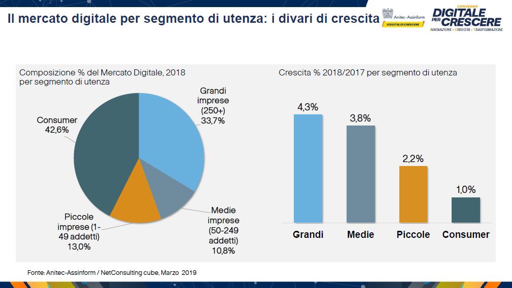 Il mercato digitale per segmento di utenza: i divari di crescita