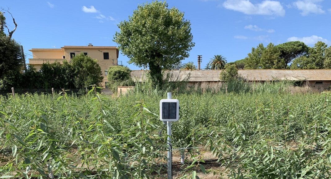 Maccarese Agricoltura 4.0